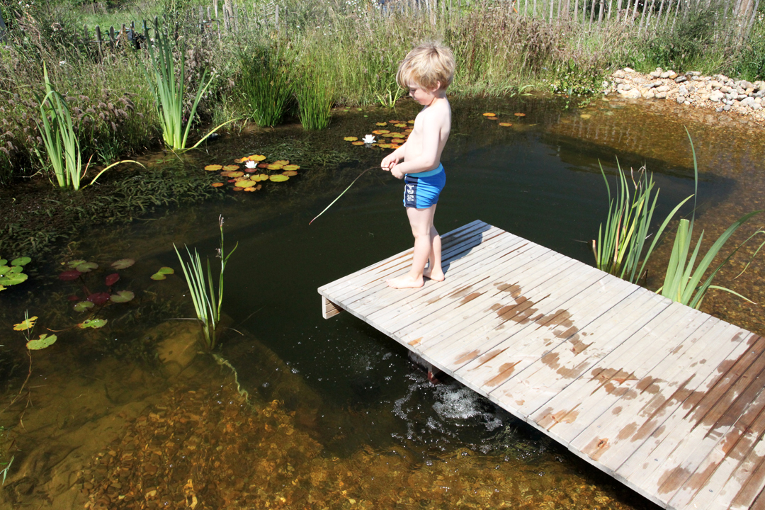 Natural swimming pond diy images for Pond swimming pool