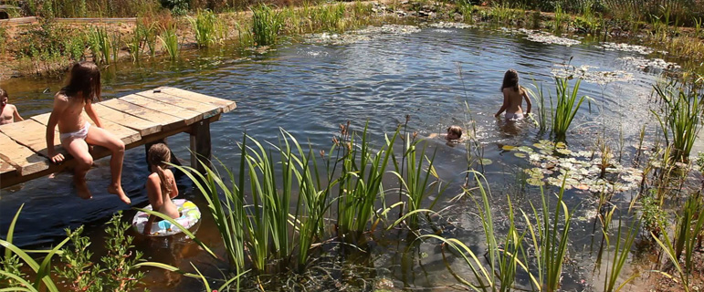 Natural Pools: Organic Pools For Swimming