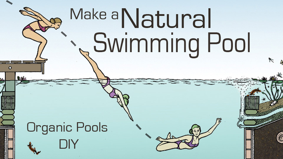 Natural pools dvd and diy manual pdf for How to build a natural swimming pool